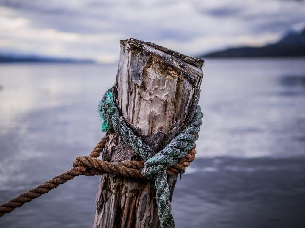 Ricominciare con resilienza