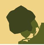 icona-branding-essenza